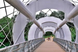 ヌエ(蚕)橋