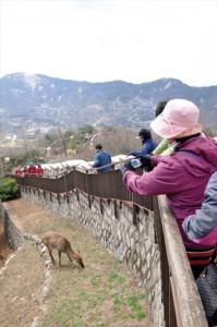 北岳山の城壁